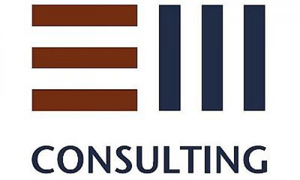 E&W Consulting GmbH & Co. KG – Senior IT Consultant